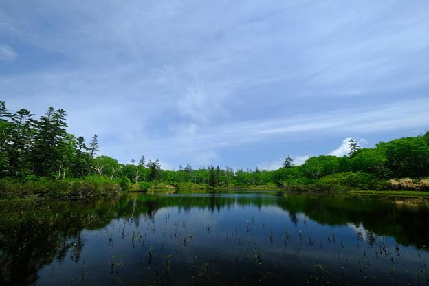 神仙沼 その1