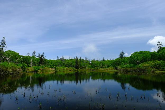神仙沼 その2