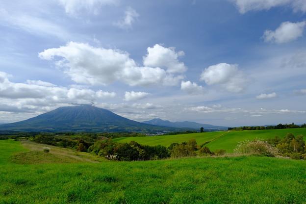 望羊の丘より羊蹄山を望む その3