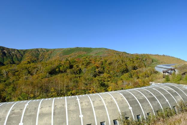 トーマル峠の眺望