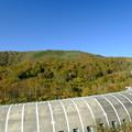 Photos: トーマル峠の眺望