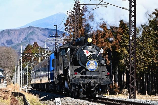 Photos: C11 325単機牽引SL大樹2号日章旗付