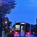 夕闇の桜とキハ11
