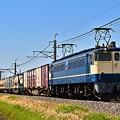 Photos: EF65 2070鹿島貨物1093レ