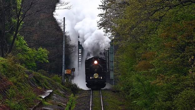 阿賀野川徳沢橋梁を渡るC57 180