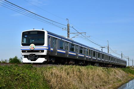 E231系マト139編成スカ色