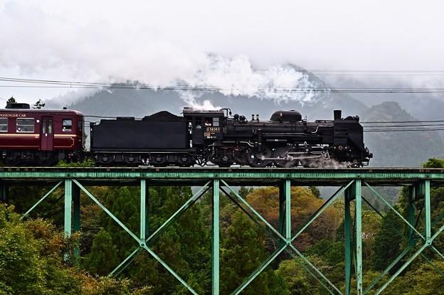 C58 363牽引SLパレオエクスプレス@安谷橋