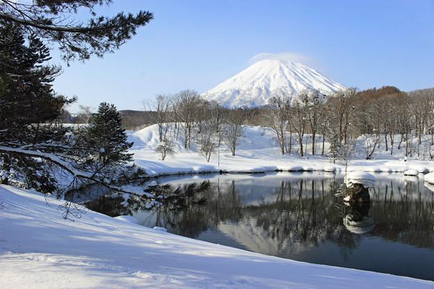 Photos: 冬の羊蹄山IMG_5941a