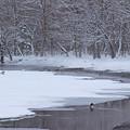 冬の屈斜路湖IMG_5985a