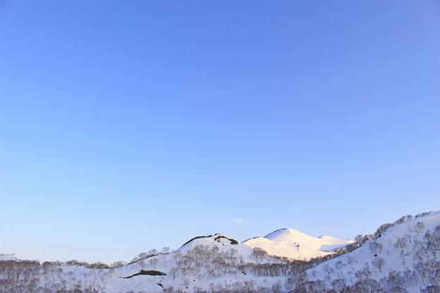 春のチセヌプリIMG_6345a