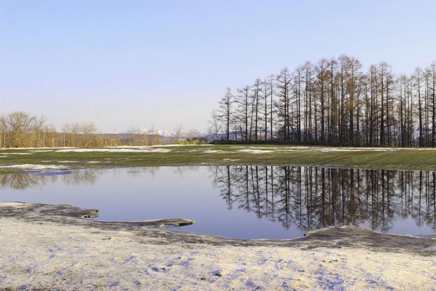 雪解けIMG_6361a