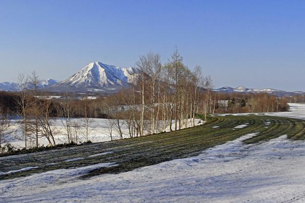 春の尻別岳IMG_6396b