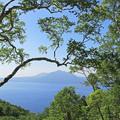 Photos: 木々の間からみえる支笏湖IMG_7385b