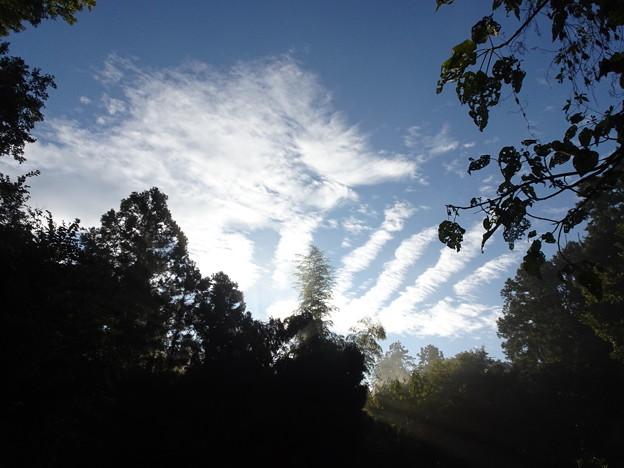 20210.10.20 きょうの風景・雲