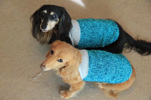 爽やかカラーの糸で編んだよ