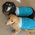 Photos: 爽やかカラーの糸で編んだよ