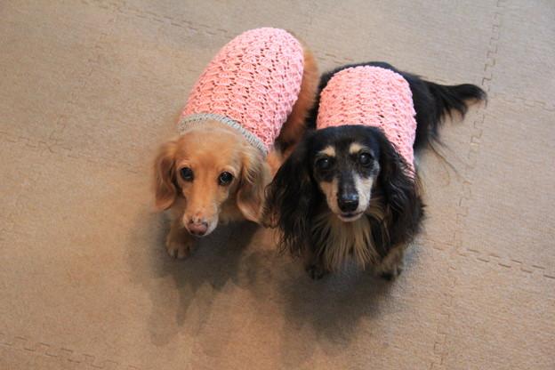 手編みの春キャミソール