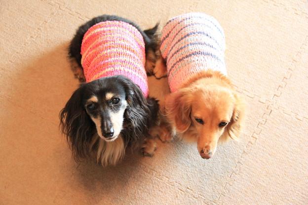 手編みのボーダーキャミソール