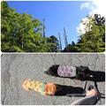 Photos: いいお天気