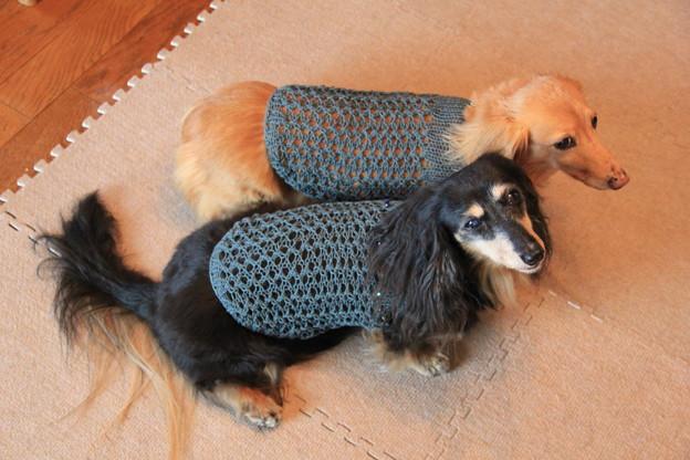 ママの手編み似合うでしょ