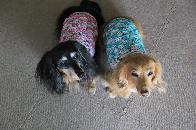 手編みのキャミソール着てみたよ