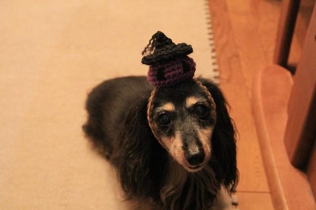 手編みでジャック・オー・ランタンのかぶりもの