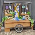 花菜ガーデン6月_8714