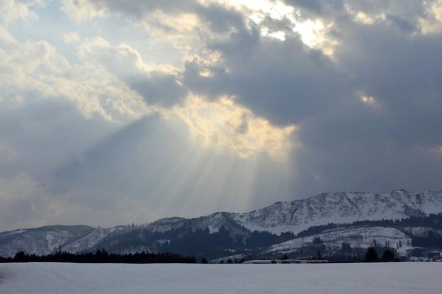 Photos: 冬の光芒
