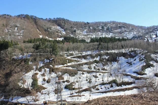 残雪の春山