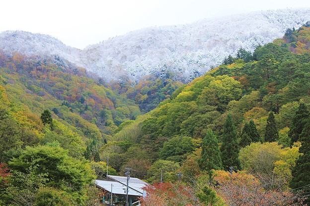 冠雪と紅葉