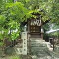 Photos: 神社で