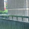 Photos: 雨の音が聴こえる