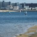 Photos: 浜辺