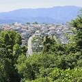 Photos: 青い山脈