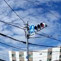 Photos: 信号