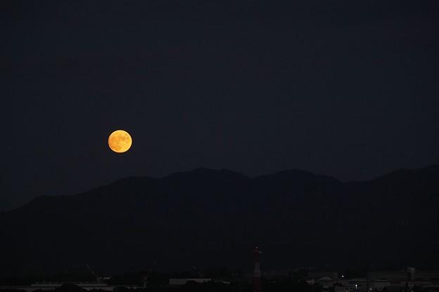 Photos: 月の出