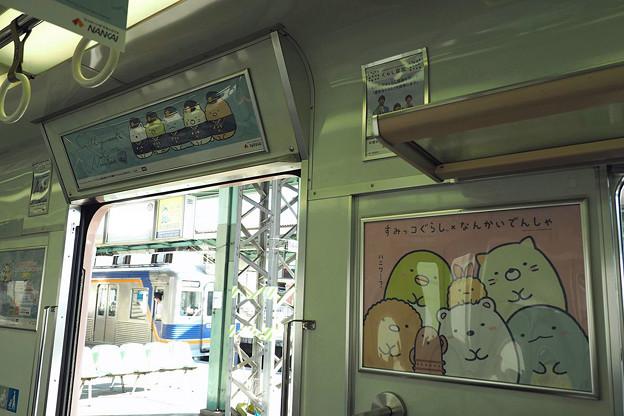 Photos: すみっコぐらし