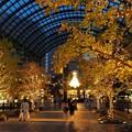 Photos: 恵比寿ガーデンプレイス