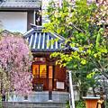 Photos: 六角堂