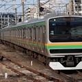 東海道線E231系1000番台 U66+K-15編成