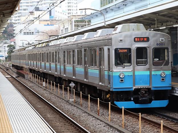 伊豆急行8000系 8001F+8153F
