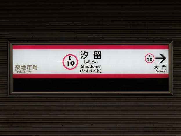 #E19 汐留駅 駅名標【光が丘方面 1】