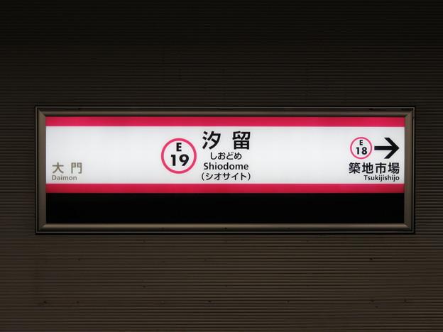 #E19 汐留駅 駅名標【都庁前方面 1】