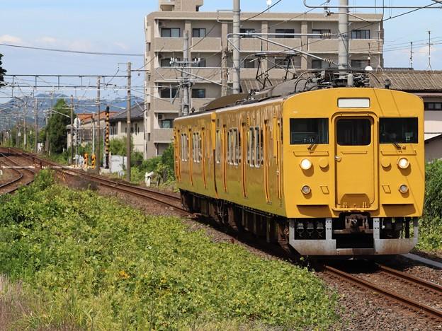 山陽線115系1000番台 T-11編成