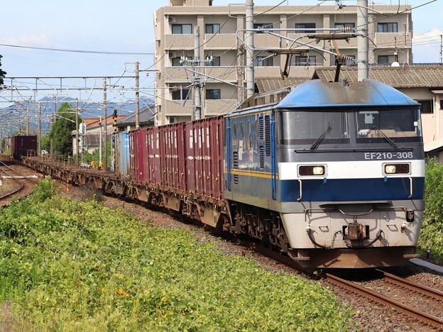 EF210-308+コキ