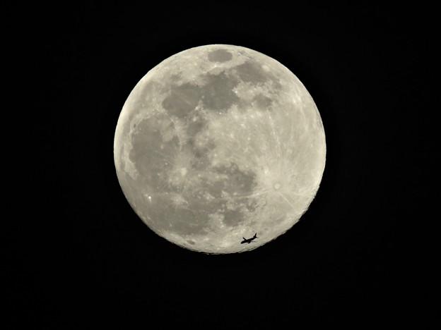 Photos: 月と飛行機