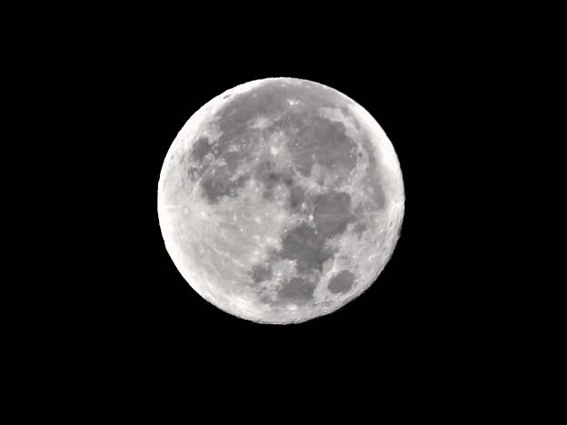 Photos: 十五夜中秋の名月