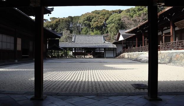 萬福寺・中庭3