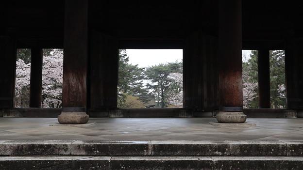 南禅寺・三門より3