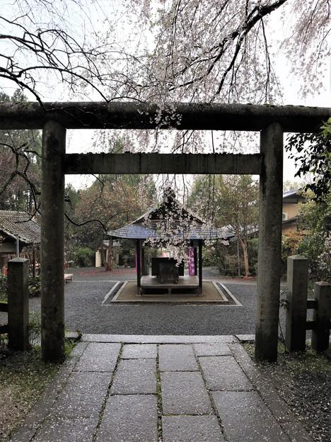 大豊神社・拝殿4